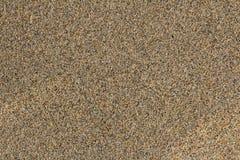 skjuten textur för bakgrundsstrand sand Royaltyfri Fotografi