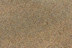 skjuten textur för bakgrundsstrand sand Royaltyfri Bild