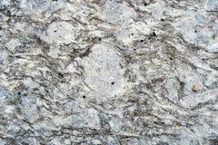 skjuten vertical för bakgrund grå rock full skjuten makropizza för ram Arkivbilder