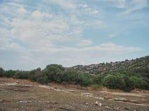 Skjutit av lantlig miljö i Cava, Rosolini - Italien arkivfoton