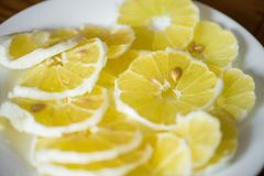 Skjutit av ljusa, gula och sura citronskivor med frö på den vita plattan i mitt av tabellen Fotografering för Bildbyråer