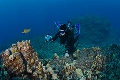 skjutit ta för dykarerev scuba Royaltyfria Foton