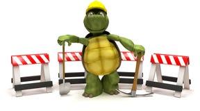 sköldpadda för yxahackaspade Royaltyfri Bild