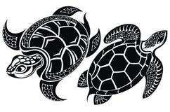 Sköldpadda kontrollera designbilden min liknande tatuering för portföljen Royaltyfri Bild