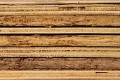 Sklejkowa tekstura Obrazy Stock