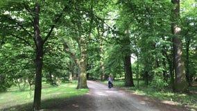 Sklejona kobiety jazda na jej rowerze w parku zbiory