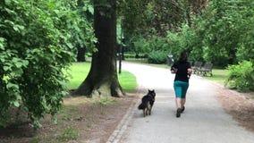 Sklejony kobieta bieg z jej psem w parku zbiory