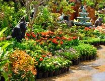 sklep roślina i drzewa dla ogródu Fotografia Stock