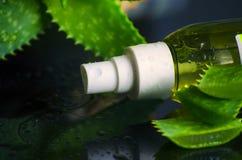 Skönhetsprodukter för brunnsort med aloe vera Arkivfoton