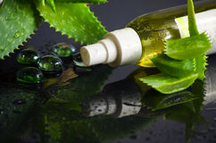 Skönhetsprodukter för brunnsort med aloe vera Arkivfoto