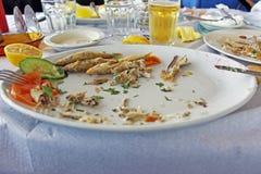 Skończony lunch Zdjęcia Stock