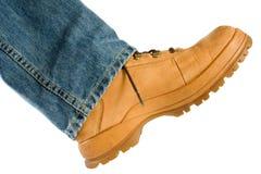sko för krönfotmanlig Arkivbild