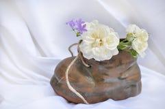 Sko med blommor Royaltyfria Foton