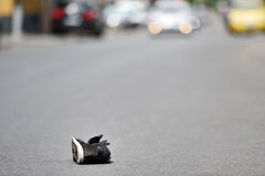Sko på gatan med bilar i bakgrund efter olycka Royaltyfri Fotografi