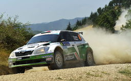 Skoda Fabia WRC. The ditalian driver Umberto Scandola   drive his Skoda Fabia   during the 40th edition of the San Marino Rally, valid for IRC Intercontinental Royalty Free Stock Photography