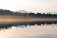 Skog, berg och dimma på solnedgången Arkivbild