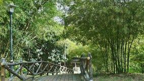 Skog för bambu för tegelstenväg skrivande in Royaltyfria Bilder