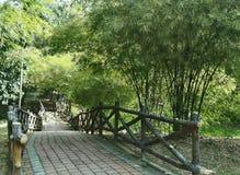 Skog för bambu för tegelstenväg skrivande in (den vänstra visningvinkeln) Royaltyfri Foto