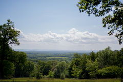 Skog för grön dal Fotografering för Bildbyråer