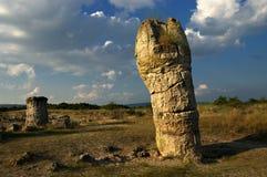 Skog för naturfenomensten, Bulgarien-/Pobiti kamani/, arkivfoto