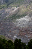 Skog för Norge gran och alpin geologi Royaltyfri Bild