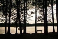 Skog för Sepiastilmystiker framme av en sjö på en regnig dag royaltyfri bild
