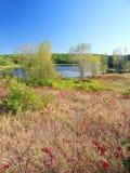 Skog för tillstånd för morän för kokkärl för sjöLalantgård Royaltyfria Foton