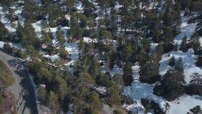 Skog i berg med snö på jordning i solig dag, flyg- skott lager videofilmer