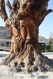 Skog i Matala Träd Grekland arkivbild