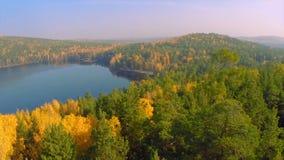 Skog i nedgångsjön i höstsikt från himlen Sjöreflexioner av nedgånglövverk Flyg- färgrik höstlövverk arkivfoton