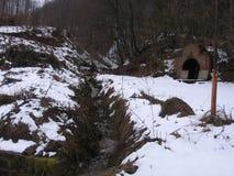 Skog i vintern Royaltyfri Bild
