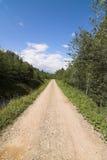skog långt Fotografering för Bildbyråer
