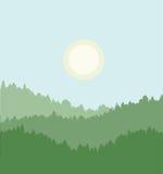 Skog med en kall sol i bakgrunden Arkivbilder
