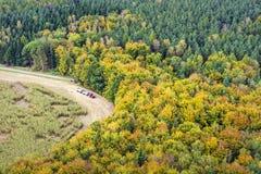 Skog med traktoren i Sachsen Schweitz Arkivbild