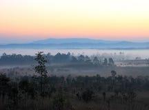Skog och berg i morgonsoluppgång Arkivfoton