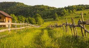 Skog och en väg med en trevlig stuga Fotografering för Bildbyråer
