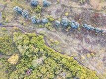 Skog och fält med en slingaflygfotografering Fotografering för Bildbyråer