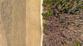 Skog och fält som avskiljs av en väg arkivbilder