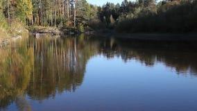 Skog och flod i aftonen stock video
