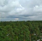 Skog och himmel fotografering för bildbyråer