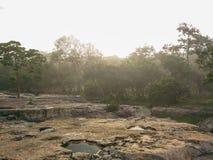 Skog- och jordningslandskap på gryning Royaltyfri Bild