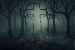 Skog och kors Fotografering för Bildbyråer