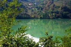 Skog och lake Fotografering för Bildbyråer