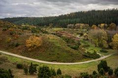 Skog och landskap i Danmark royaltyfri fotografi