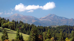 Skog och Mala Fatra ovanför den Jasenova byn Arkivfoton
