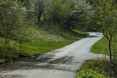 Skog och olika träd med det nya bladet, blomningen och vägen i vår på det Plana berget Arkivbild