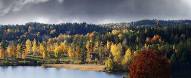Skog och sjö i höstcolores Royaltyfri Bild
