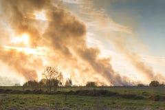 Skog- och stäppbränder torkar fullständigt för att förstöra fälten och stäpparna under en sträng torka Katastrofen kommer med van fotografering för bildbyråer