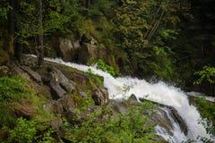 Skog på den CaÑŒyanka vattenfallet Arkivbilder