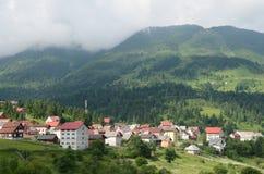 Skog Ranca arkivfoto